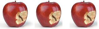 """can a few bad apples spoil the whole barrel """"it's only a few bad apples"""" – news flash mr/ms slow learner and wilfully ignorant, it only takes one bad apple to eventually spoil the whole barrel, which is what william wright shared nowthis 's video."""